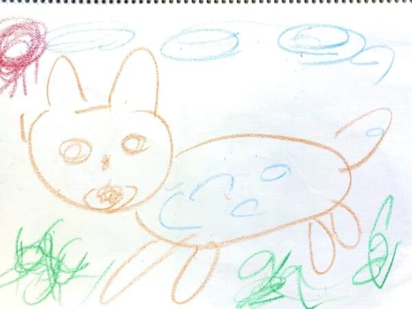 #5歳 猫ちゃん