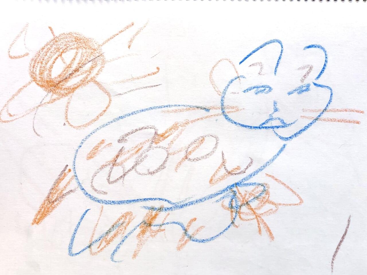 #5歳 おばあちゃん家の猫ちゃん